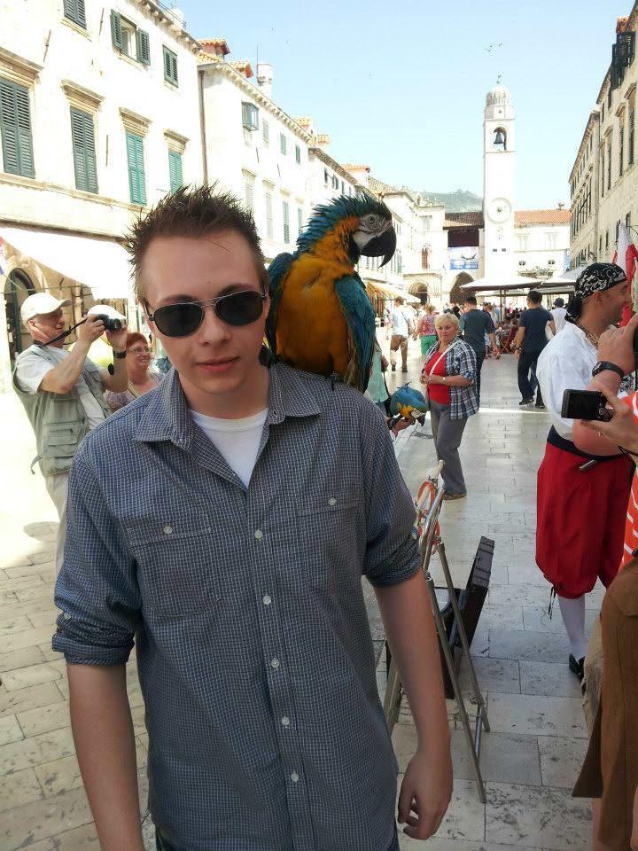Parrot dubrovnik
