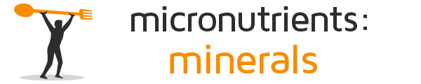 Micronutrients and Minerals