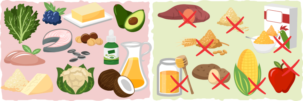 Learn the Difference between Keto-Friendly Food and Non-Keto Food