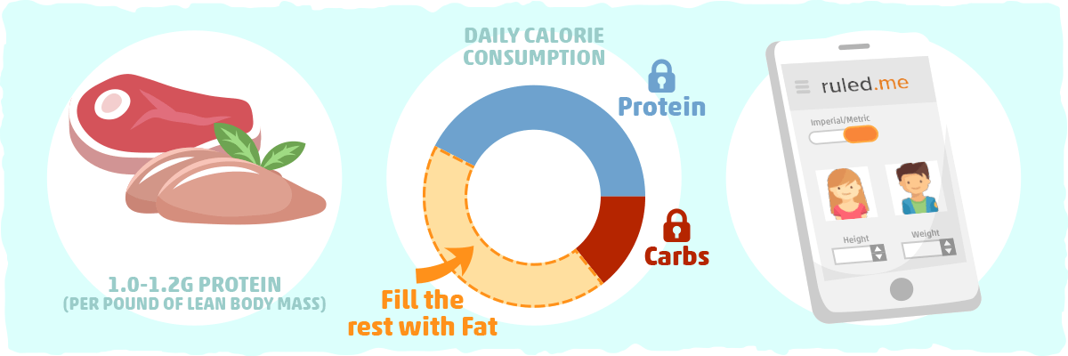 What is the Right Amount of Calories and Protein?