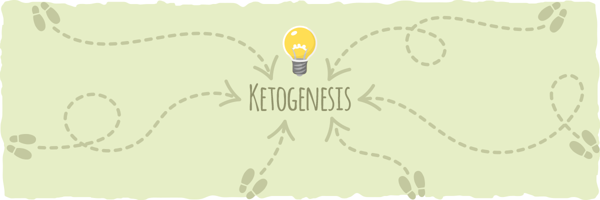It may take you a bit longer to reach ketogenesis, but that's okay.