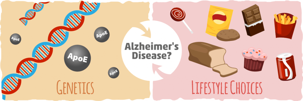 How do How Genetics Apply To Alzheimer's?
