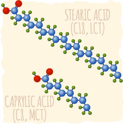 MCTs Vs. Long-Chain Fatty Acids