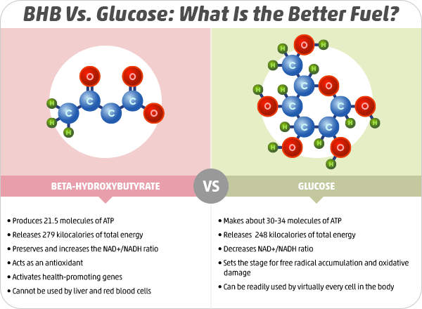 BHB Vs. Glucose: What Is the Better Fuel?