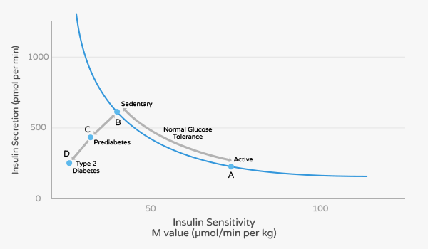Insulin Sensitivity and Insulin Resistance