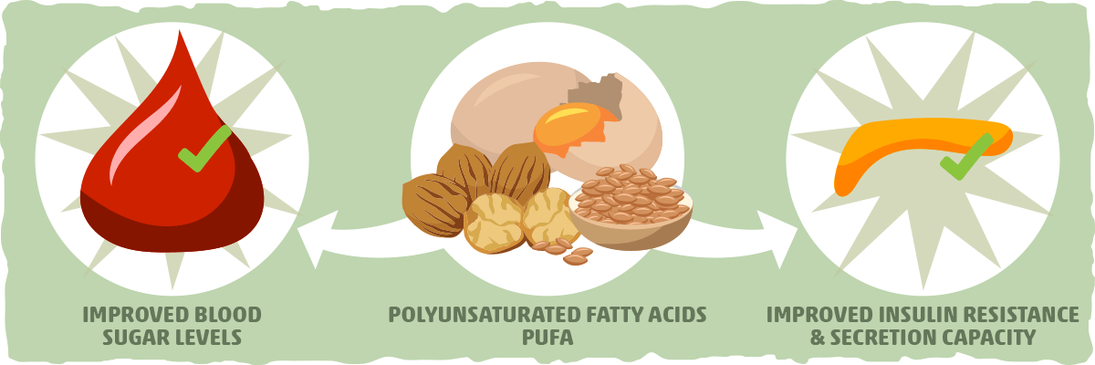 Polyunsaturated Fats Can Improve Blood Sugar Regulation