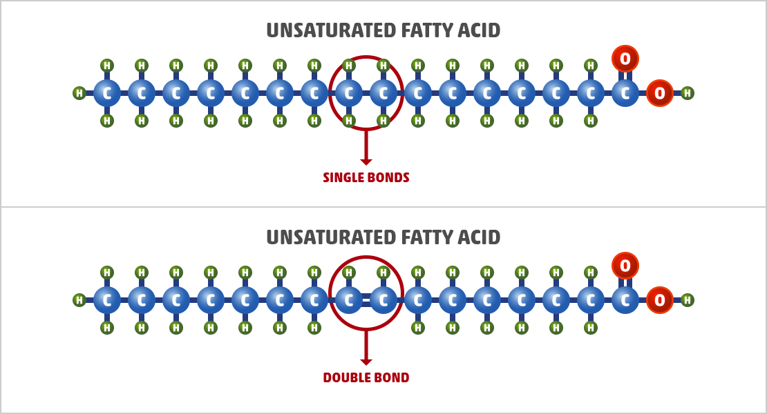 Saturated vs. Unsaturated Fat: What is the Difference?