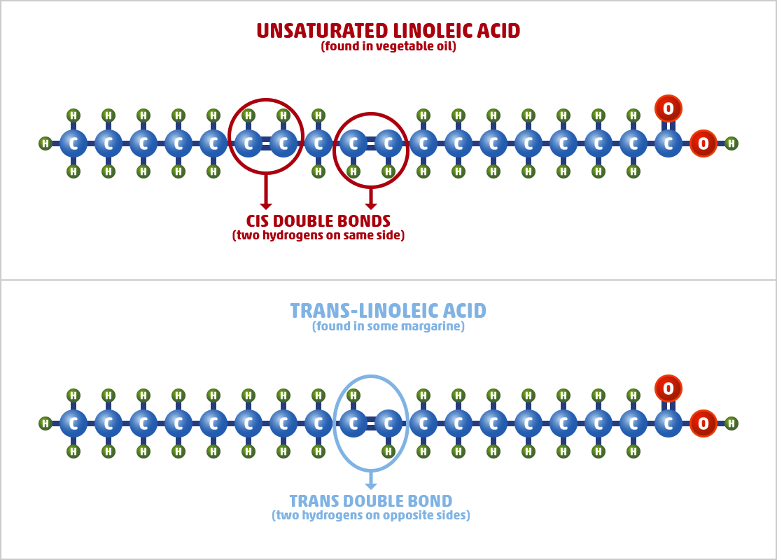 Artificial Trans-unsaturated Fat Examples