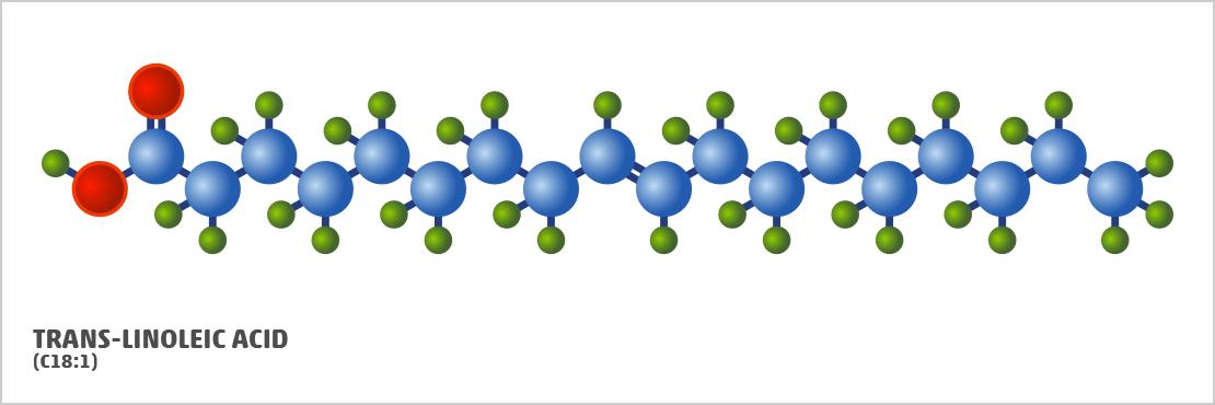 trans-linoleic acid
