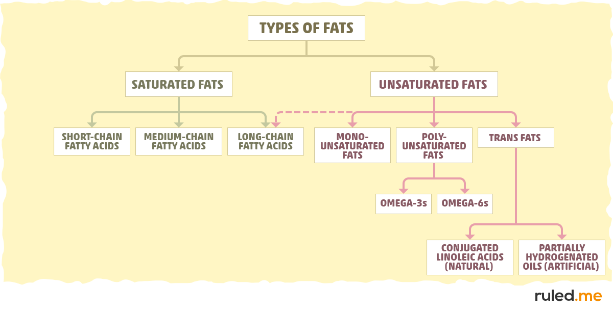 The Types of Fat