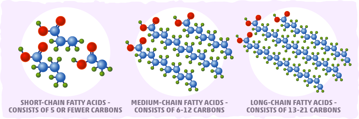 Fatty Acid Chain Length